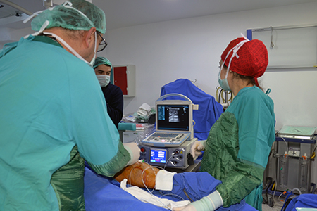 Dr Mustafa Saygın
